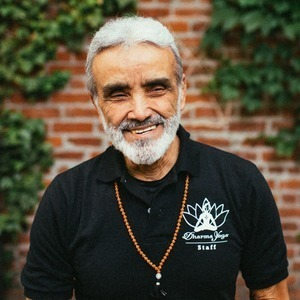 Sri Dharma Mittra's Online Workout Videos on Alo Moves